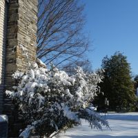 Snowy morning in Wynnewood, Нарберт