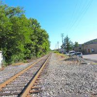 Tracks, Ньюри