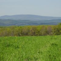 Blue Knob mountain from Chestnut Ridge, Пайнт