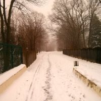 Radnor Trail, Раднор