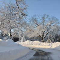 2010 winter scene in Saint Davids, PA, Раднор