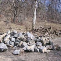 Rock garden, Ранкин
