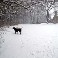 Church in Winter, Рокледж