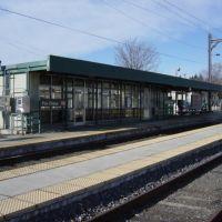 Fox ChaseTrain Station, Рокледж