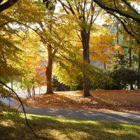 Fall Scene at Fox Chase Farm, Рокледж
