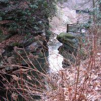 Roaring Brook roars through Nay Aug Gorge in Scranton [008370], Скрантон