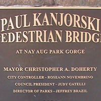 NAY AUG PARK GORGE FOOTBRIDGE, Скрантон
