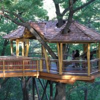 NAY AUG TREEHOUSE, Скрантон