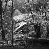 Nay Aug Bridge, Скрантон
