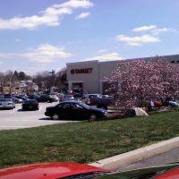 Target  Store 857 Baltimore Pike  Springfield, PA 19064, Спрингфилд
