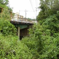 Light Rail Over Darby Creek, Спрингфилд