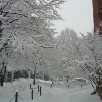 2003 winter from east halls, Стейт-Колледж