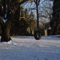 Tire swing in neighborhood, Трапп