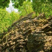 Cliffs, Финиксвилл