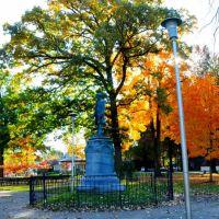 reeves park, Финиксвилл