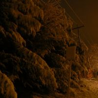 Midnight Snow - Snow covered trees, Sign, Power Lines - Lock Haven, PA, Флемингтон