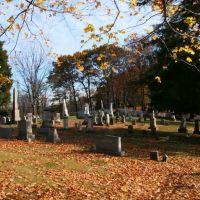 Millers Run Presbyterian Cemetery, Хьюстон