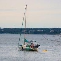 Lone Sailboat R.I., Миддлтаун