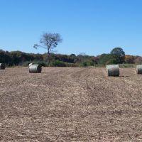 Schartner Farm, Exeter, Rhode Island, Паутакет