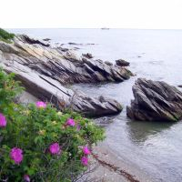view of Narragansett Bay, Beavertail State Park, Beavertail Rd, Jamestown, RI 02835, Паутакет