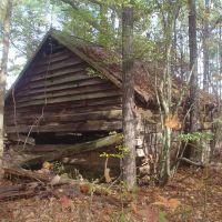 Old log shed, Горман