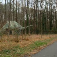 Greenway Trail, Горман