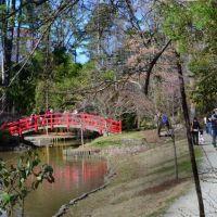 Japanese Garden, Горман