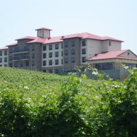 Holiday Inn Express-Childress Vineyards, Давидсон