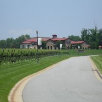 Childress Vineyards, Давидсон