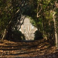 Tunnel Ahead, Джеймстаун
