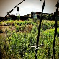 The old Doran Mill, Кливленд