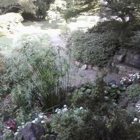 Memorial Garden, Concord. Summer 2010, Конкорд