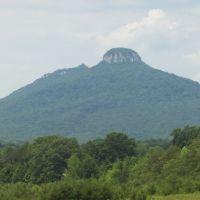Pilot Mountain, NC, Кулими