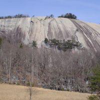 Stone Mountain, Кулими