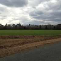 Field Along Deep River, Роквелл