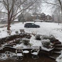 Late snow surprise, Сталлингс