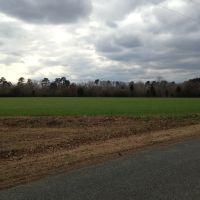 Field Along Deep River, Хадсон