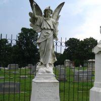 Thomas Wolfe`s, Angel, Хендерсонвилл