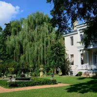 Nice Garden, Эдентон