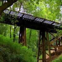 Aberdeen Carolina & Western Railway trestle runs alongside the Deep River, Эллерб