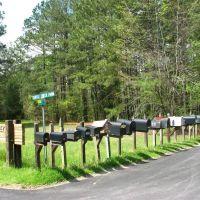 Mailboxes, Эллерб