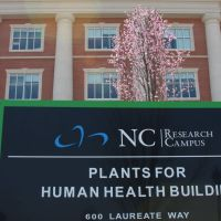N.C. State University Plants for Human Health Institute, Эночвилл