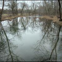 Little Butler Creek Reflections, Айрон-Сити