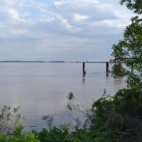 Mississippi River in June 2008, Аламо