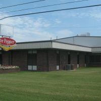 Dr. Pepper south of Dyersburg, Аламо