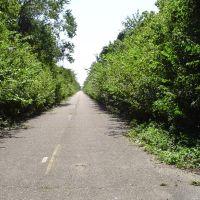 abandoned highway, Аламо