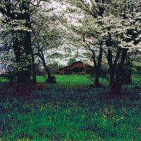 Barn surrounded by dogwood trees, Алгуд