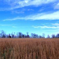 Tennessee Winter, Алгуд