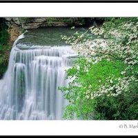 Springtime at Burgess Falls - lightontheland.com, Бакстер
