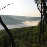 Savage Gulf near Beersheba Springs, Tennessee, Бакстер